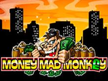 Азартная игра без регистрации - Помешанная На Деньгах Обезьяна